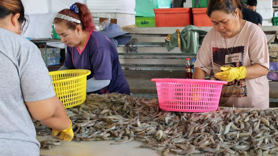Thai seafood industry buoyed by EU
